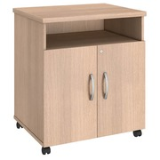 Side cupboard light oak Bruneau Excellens
