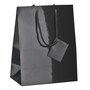 Box of 10 glossy shopping bags with cord handles 23 x 18 x 10 cm